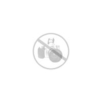 Invicta Bolt Zeus Reserve Chronograph Black Dial Black Polyurethane Watch